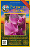 50 Royal Family Mixed Sweet Pea Wildflower Seeds - Everwilde Farms Mylar Packet