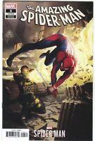 Amazing Spider-Man 5 Marvel 2018 1:10 Daryl Mandryk Variant Video Game
