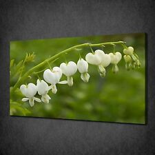BLEEDING HEART WHITE FLOWERS MODERN CANVAS WALL ART PRINT PICTURE READY TO HANG