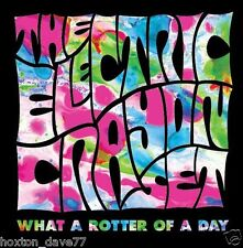THE ELECTRIC CRAYON SET What A Rotter Of A Day LP #214/300 FINLAND 2007 Psych