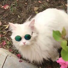 Cat Sunglasses Pet Accessories Sunglasse. Lettle Kitty Sunglasses