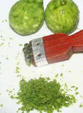 Organic DRIED Thai KAFFIR LIME SKIN Powder 10g
