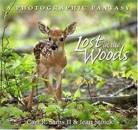 Lost In The Woods: A Photographic Fantasy by Carl R. Sams, Jean Stoick