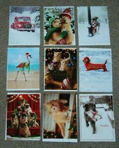 Lot 9 NEW Avanti All Christmas Funny Animal Cat Dog Greeting Cards & Envelopes