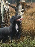 Nigel Hemming COCKER THE WOODS Springer Spaniels, Art Canine Ltd Edition  #1