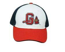 Gwinnett Braves Vintage Minor League Logo Baseball Cap Hat Blue and Red