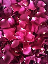 Freeze Dried Red Rose Petals.10 cups petals .Lovely natural rose petals.Confetti