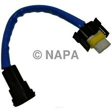 Fog / Driving Light Wiring Harness-C NAPA/TECH EXPERT-TEE HWH101