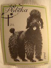 Poland Stamp 1963 Scott 1120 A397 Dog 1 Zt