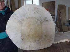 Baumscheibe, Holzscheibe, Tischplatte, ca. 60 x 5 cm