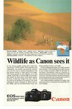 1989 Canon EOS 620 & 650 SLR Camera Advertisement