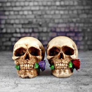 Gothic Skull and Roses Ornament Head Teeth Statue Figurine Skeleton Horror