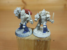 2 PLASTIC ADVANCED SPACE CRUSADE SCOUTS PAINTED (2930)