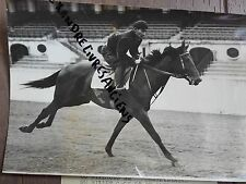 PHOTO DE PRESSE 1955 COURSE HIPPIQUE LONGCHAMP RIBOT TENERANI ET ROMANELLA