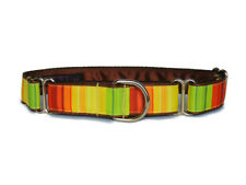 "Handmade Martingale dog collar 1"" greyhound lurcher whippet. Nature Stripes."