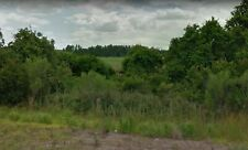 4.82 Acre Lot in Central Florida: *Private & Secluded* Only 20 Miles to Disney!