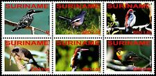 ✔️ SURINAME 2008 - FAUNA BIRDS - MI. 2244/2249 ** MNH OG