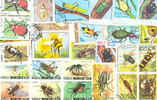 Insects-200 all different collection-large colourful(few butterflies-see shop)