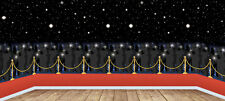 40FT HOLLYWOOD PARTY GIANT RED CARPET SCENE WALL BACKDROP VIP ROOM DECORATION