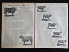 1919 Iowa Beef Rations The Latest Results Feeding Test At Ames 2 Page Article