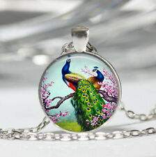 Peacock photo Tibet silver Dome Glass Cabochon Necklace chain Pendant #376