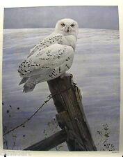 Robert BATEMAN Ready for the Hunt Snowy Owl VERY RARE litho MINT condition 1982