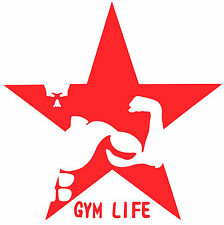 GYM LIFE,Fitness, Wellness, Health, Exercise, Gym vinyl decals, Car Window