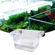 Fish Breeding Aquarium Box Tank Isolation Incubator Hatchery Young Breeder Clear