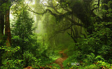 7x5FT Polyester Photo Background Green Jungle Forest Studio Backdrop Washable LB
