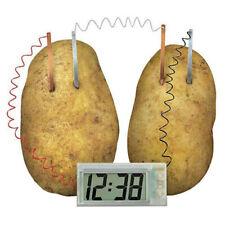 Educational DIY Experiment Green Energy Science Toy Set Potato Powered Clock Kit