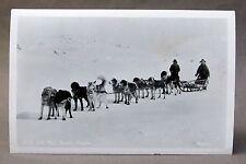 1951 U.S. Mail Team Dog Sled Alaska real photo Rppc postcard