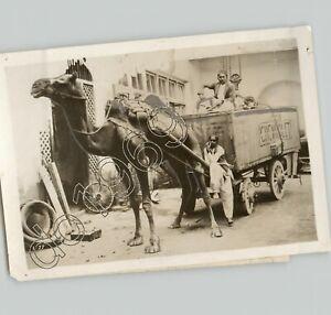 CHEVROLET Car Delivered by CAMEL in KARACHI INDIA Exotic Vintage Press Photo