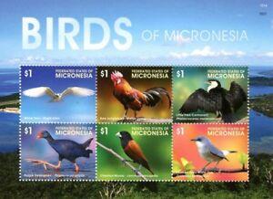 Micronesia 2015 MNH SS, Birds, Tern, Swamphen, Munia, Red Junglefowl,