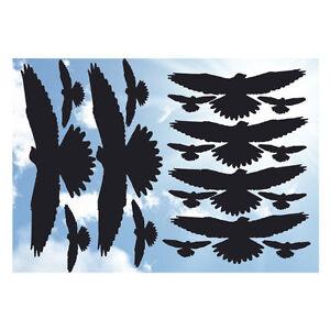 Vogelschreck XXL-Set 36 tlg. Aufkleber Folie Vogelschutz Abwehr Fensteraufkleber