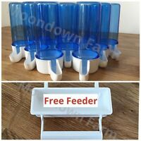20 x 110cc Cage Bird Water Drinker / Feeder for Finch, Canary, Budgie Aviary