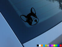 FRENCH BULLDOG V2 CAR STICKER DECAL BUMPER WINDOW VINYL FUNNY LAPTOP NOVELTY DOG