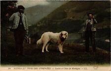 CPA Scénes et Types des Pyrénées Guides et Chien de Montagne (414796)