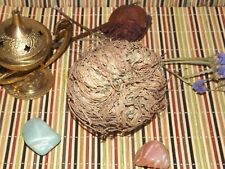 Herb ~ Rose of Jericho ~ Resurrection Rose ~ For Love, Prosperity & Good Luck