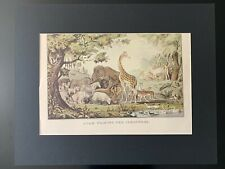 "Vintage ""Adam Naming the Creatures"" Matted Print"