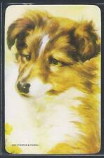#920.389 Blank Back Swap Cards -MINT- Collie Dog puppy