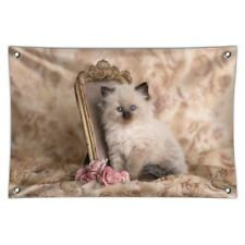 Ragdoll Tiffany Cat Kitten Victorian Roses Home Business Office Sign