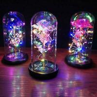 2020 Ewige Rose Blume In Glas LED Nachtlicht Dekoration NEW B0F0