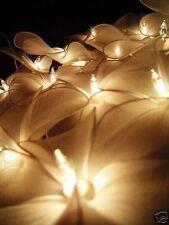 White Nylon Frangipani Style Flower Fairy Light String