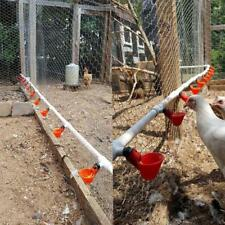Poultry Water Drinking Cups Plastic Poultry Chicken Hen Bird Automatic Drinker`