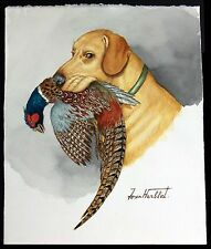 "Jean Herblet, French Art 17""x13"" Original Watercolor Golden Labrador, Pheasant"