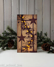 Pip Berry Garland w Ladder and Stars Radiance battery Lighted Canvas 39107 NEW