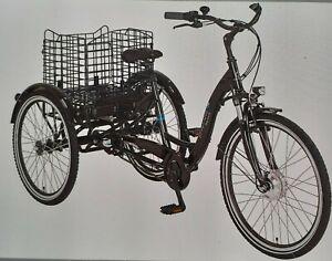 E-Bike-Dreirad für Erwachsene