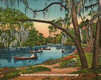 Florida Art and Photos reprint mini poster 2 sizes available 030