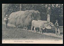 France FARMING Aix-les-bains Attelage de Boeufs c1900/10s? social history PPC