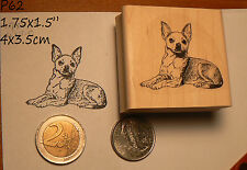P60 Chihuahua dog rubber stamp